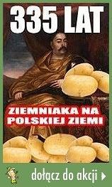 335 lat ziemniaka na polskiej ziemi